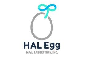 HAL Egg: La nuova divisione Nintendo dedicata ai giochi su smartphone