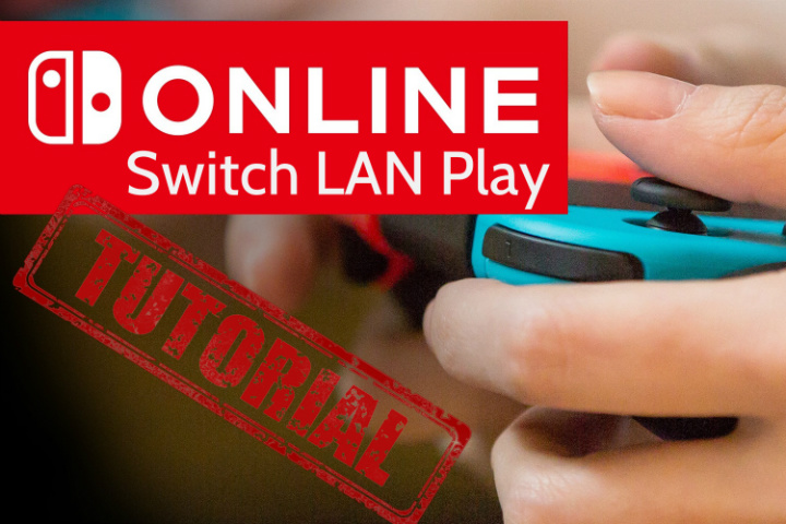 Switch LAN Play – Guida