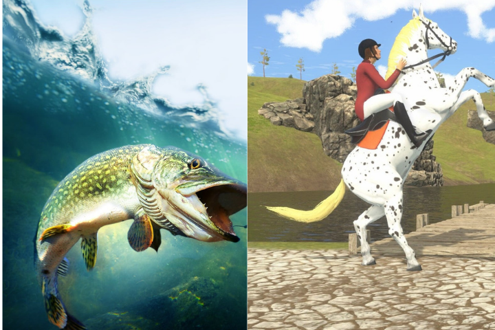 My Little Riding Champion e Pro Fishing Simulator sono arrivati su PC e console!